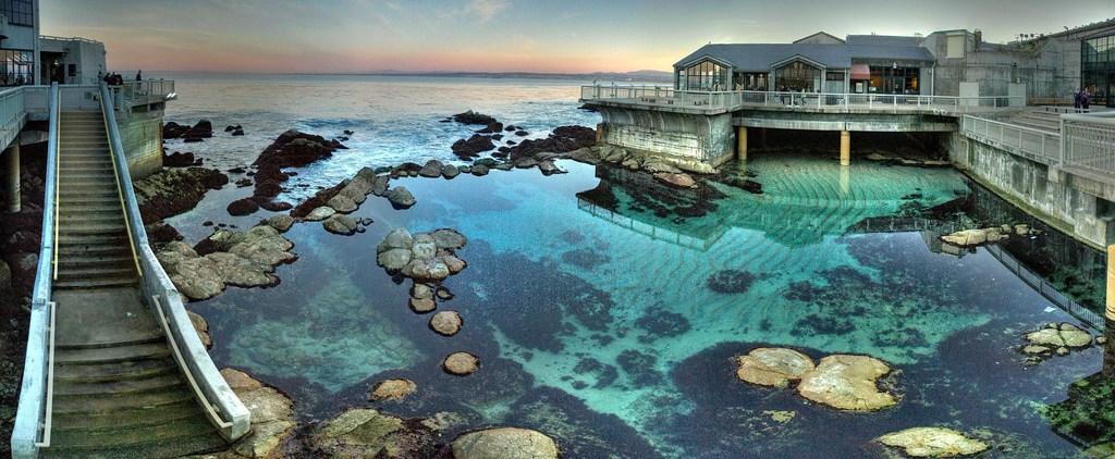 Monterey Bay Aquarium California