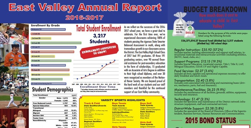 Screenshot of the annual report to add visual