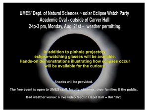 Solar eclipse party.jpg