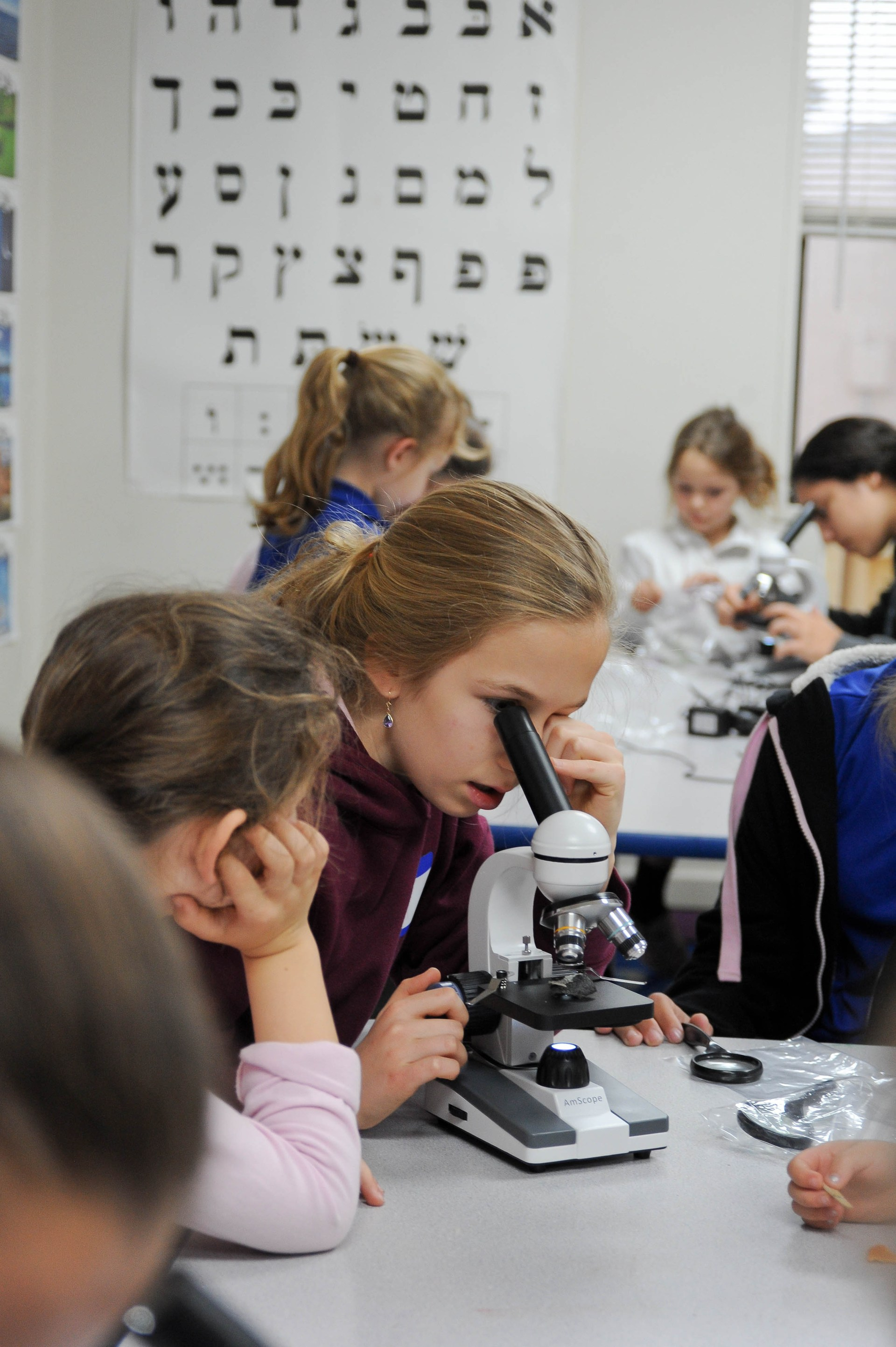 girl looking in a microscope