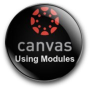 Canvas Modules