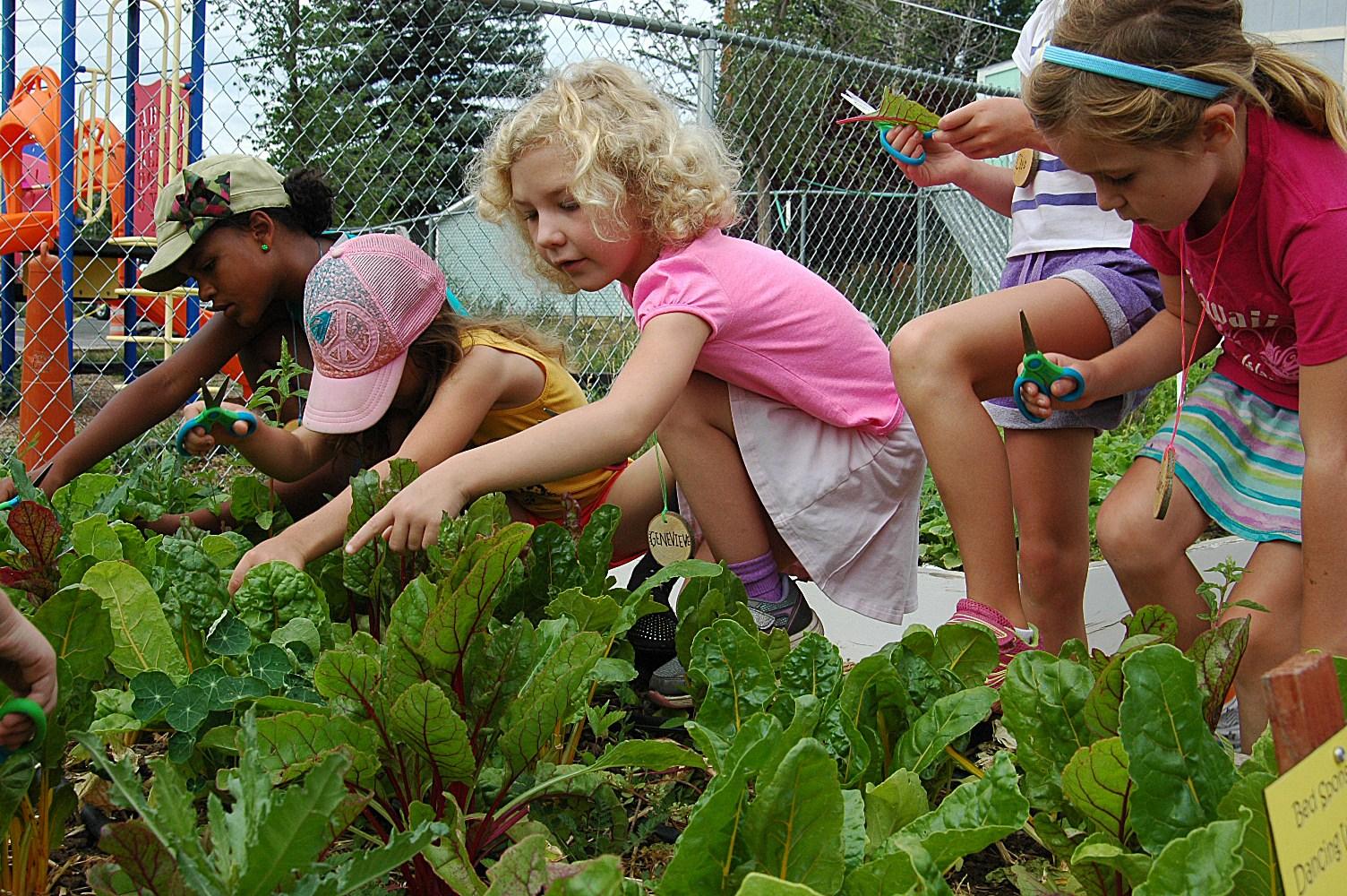 Kids in garden.