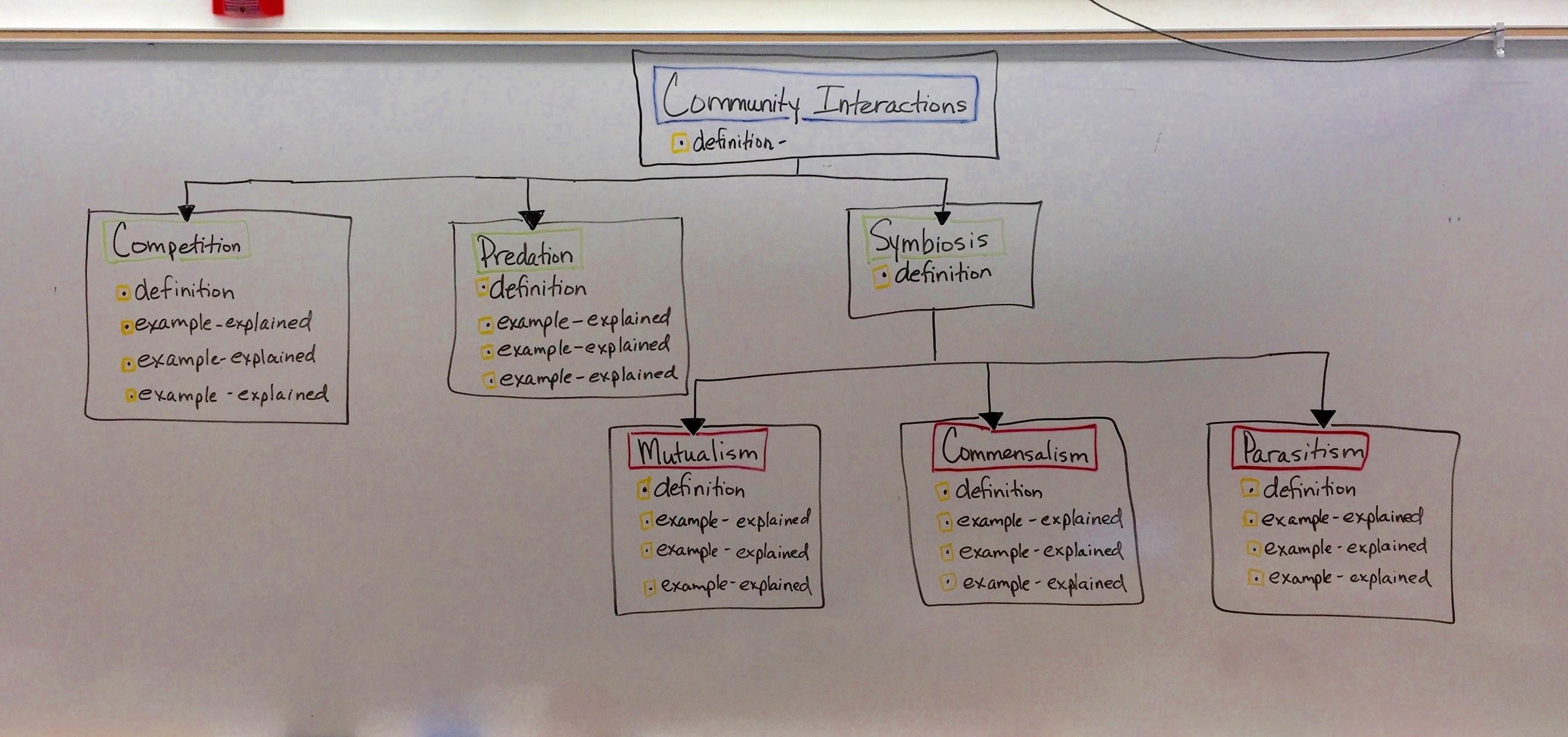 amoeba sisters video recap of meiosis the great divide worksheet answer key
