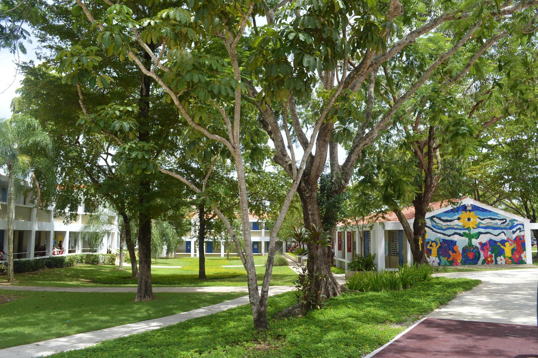 Baldwin School Elementary School