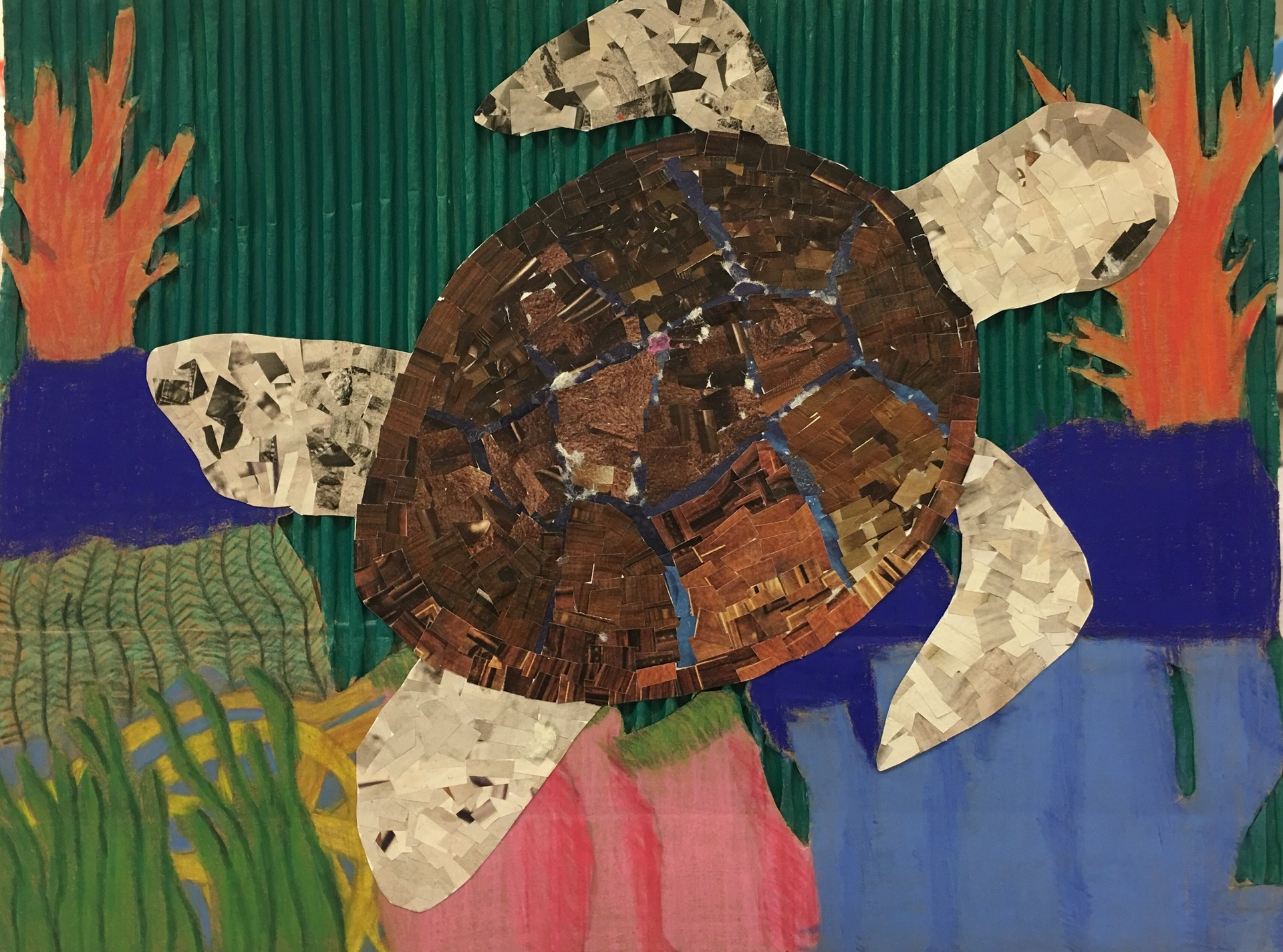 mixed media collage of a turtle