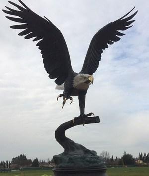 CVCHS--Eagle statue.jpg