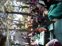 Ren Fest 2012 17.jpg