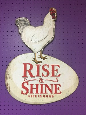 Rooster and an egg that says Rise and Shine Life is Good