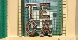 Cropped TECA.jpg
