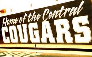 cougar banner