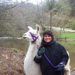 Erin Humbert's Profile Photo