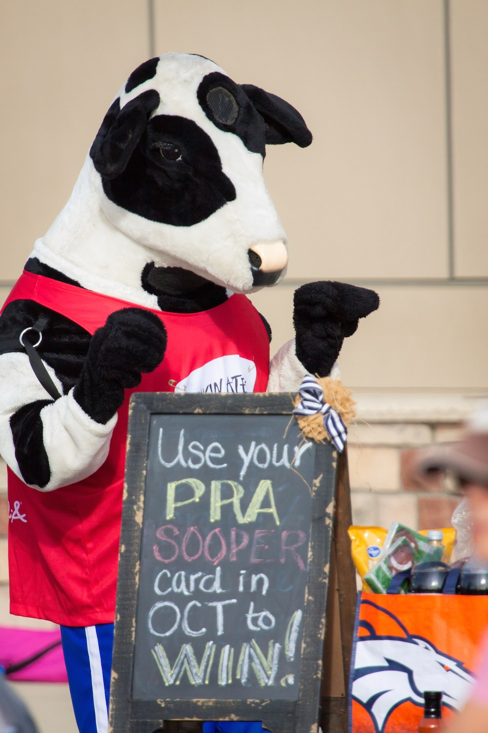 Chick-fil-a cow holding sign