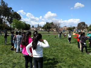 Students rush to finish a relay race, picture 2