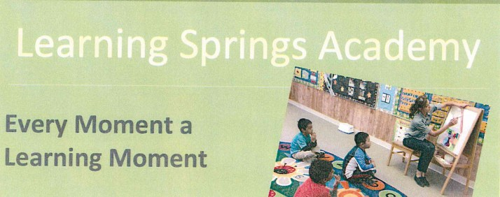 Learning Springs Academy