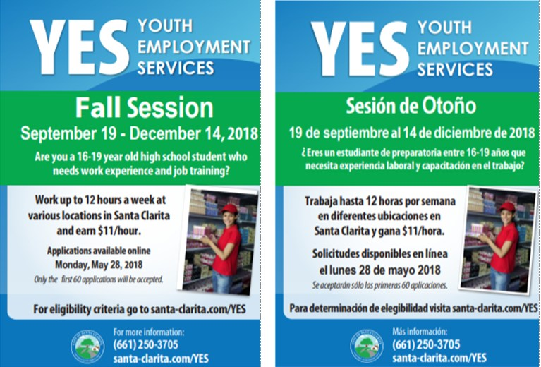 YES flyer image