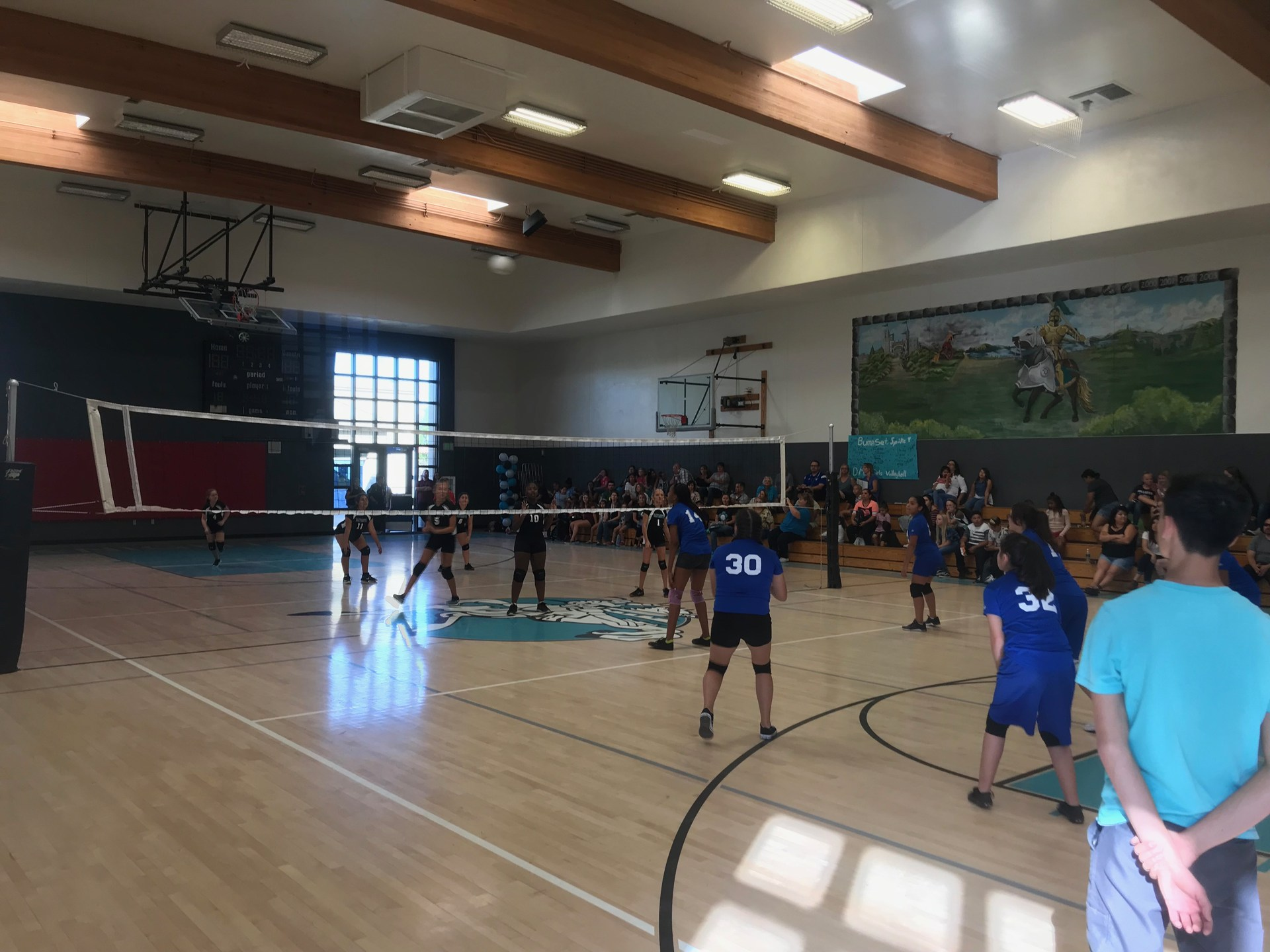 Girls Volleyball Team in Action