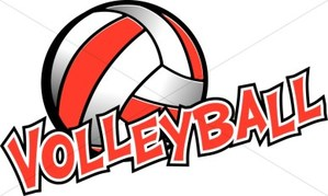 image of a volleyball