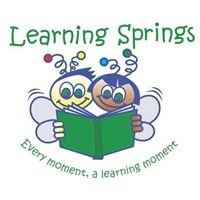 Learning Springs