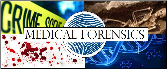 Forensics Image 5