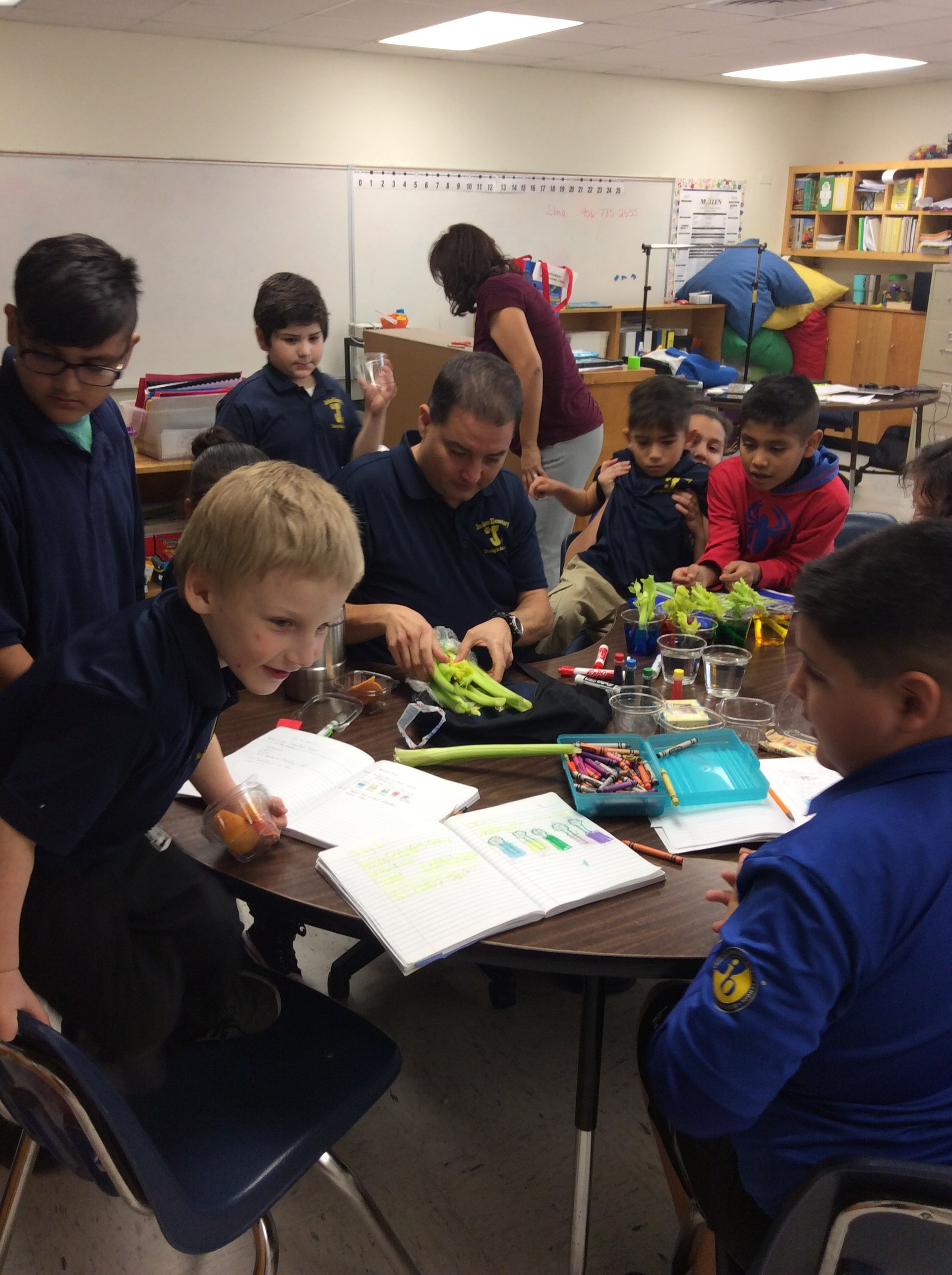 students participate in science class