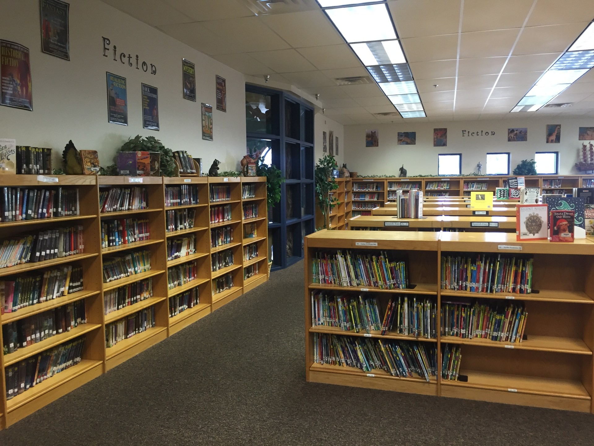 Picture of books on library shelves