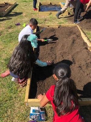 Students planting their garden