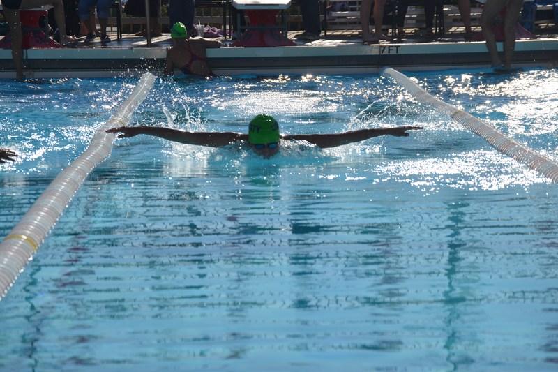 Swimming and Diving At BC Thumbnail Image