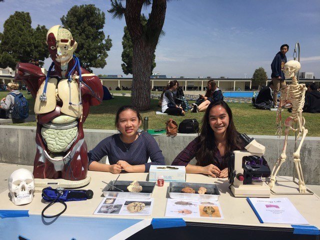 CTE and Electives Fair Thumbnail Image