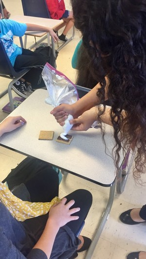 Science lessons with the help of s'mores!