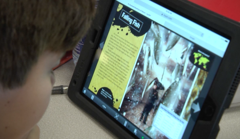 Students on the Brink of Reading 200 Million Words in Week 29 myON Report Thumbnail Image