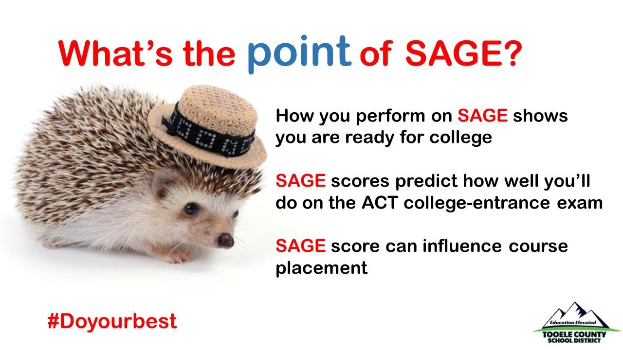 SAGE Hedgehog