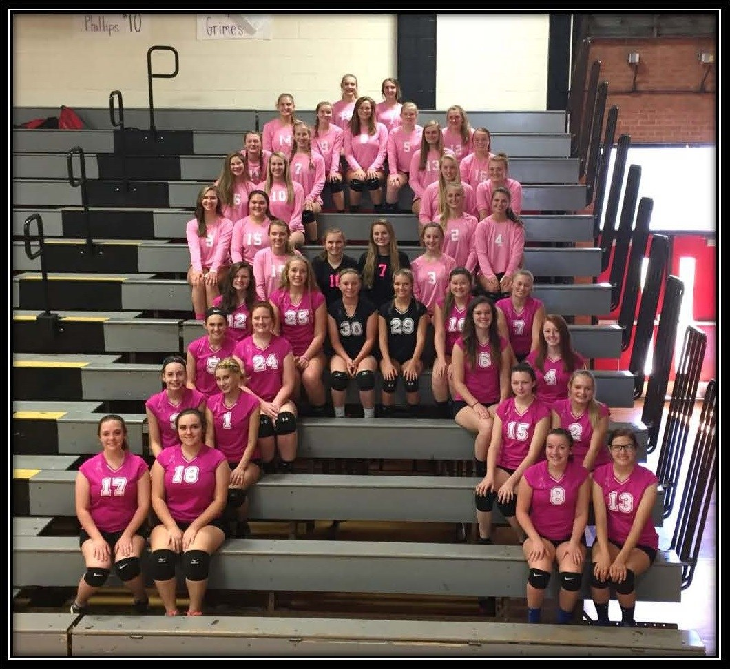 Volleyball Pink Out Game