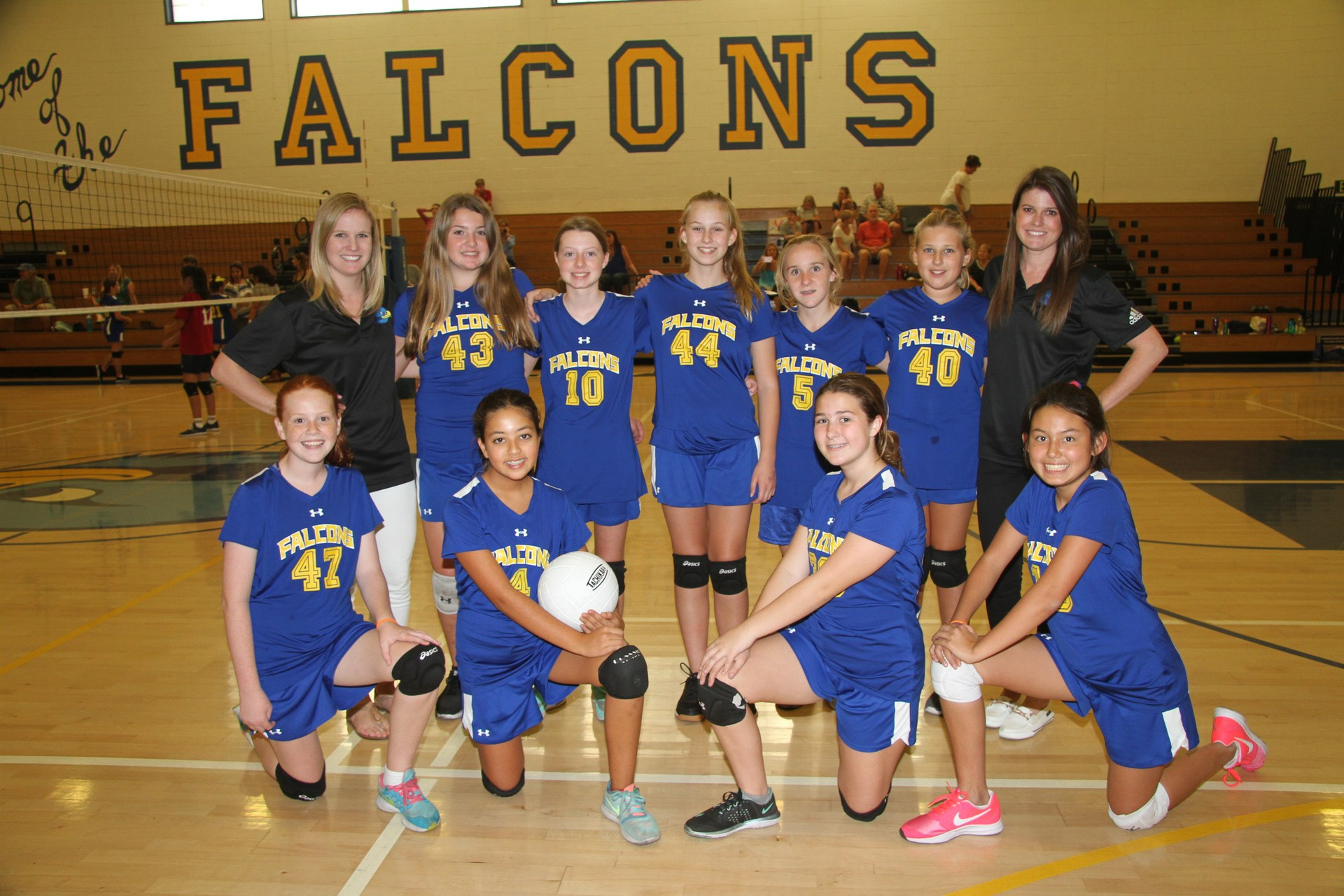team photo of valley a girls volleyball