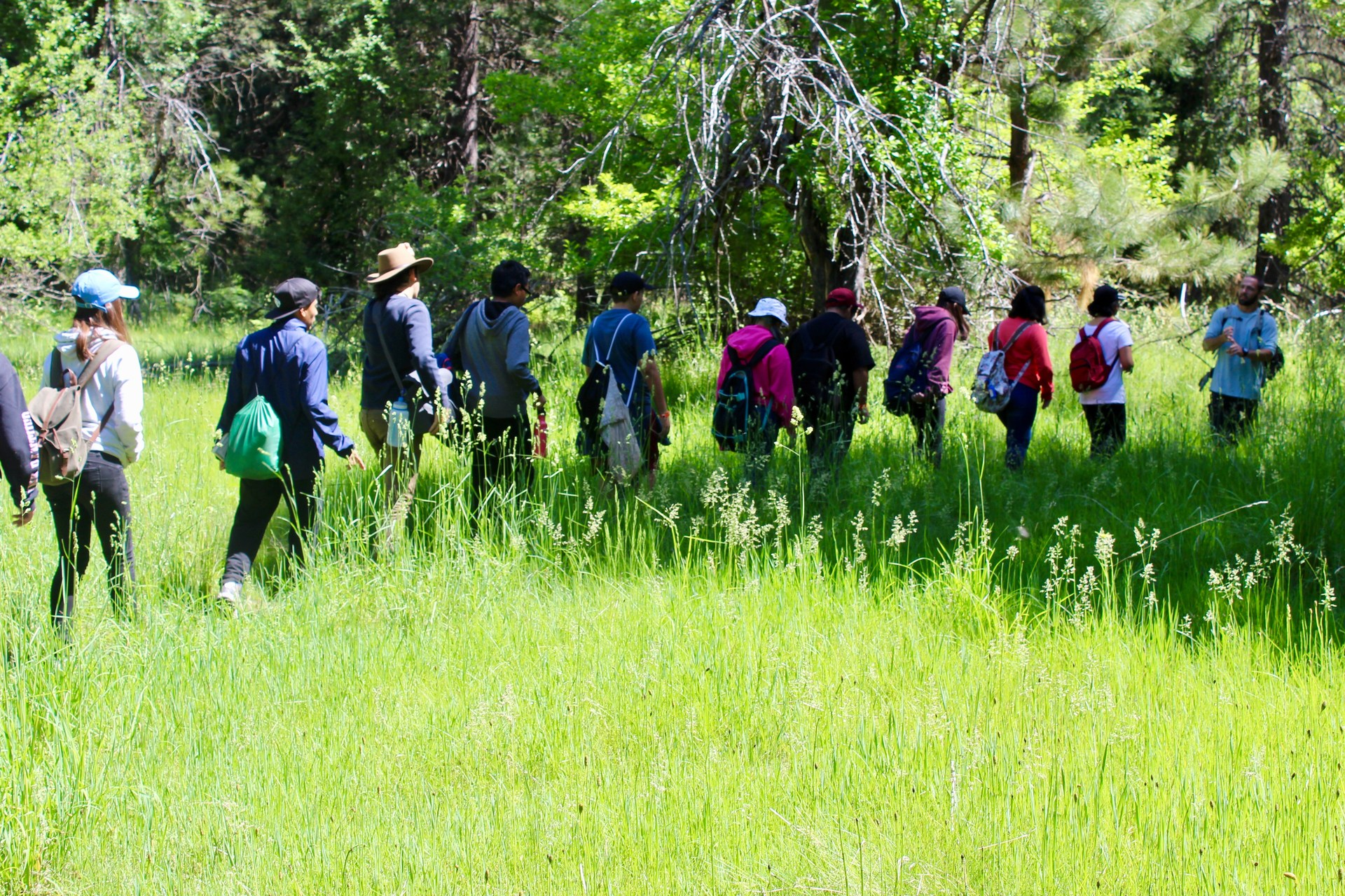 Students hike through a field