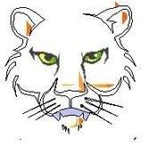 WMS Wildcat Image