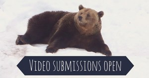 Video submissions open