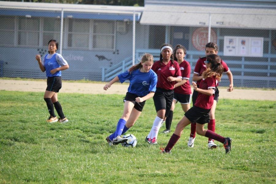Soccer dribbling photo