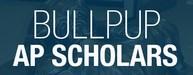 Bullpups AP Scholars