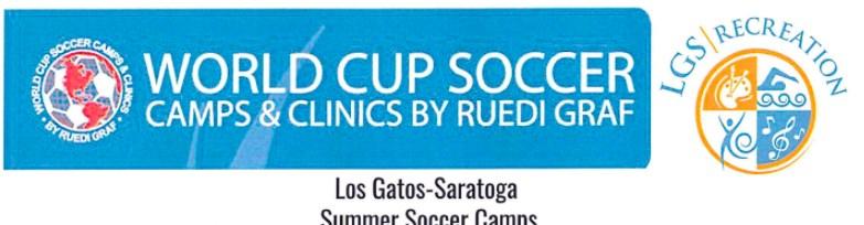 World Cup Soccer Logo