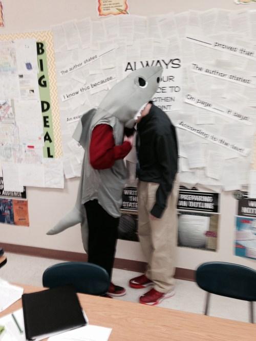 Shark attack in room 801.