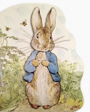 peter-rabbit-board-book_1024x1024.jpg