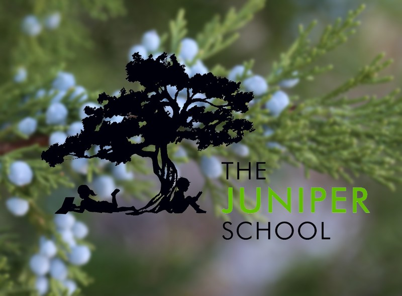 Juniper school logo with photos of juniper berries behind.