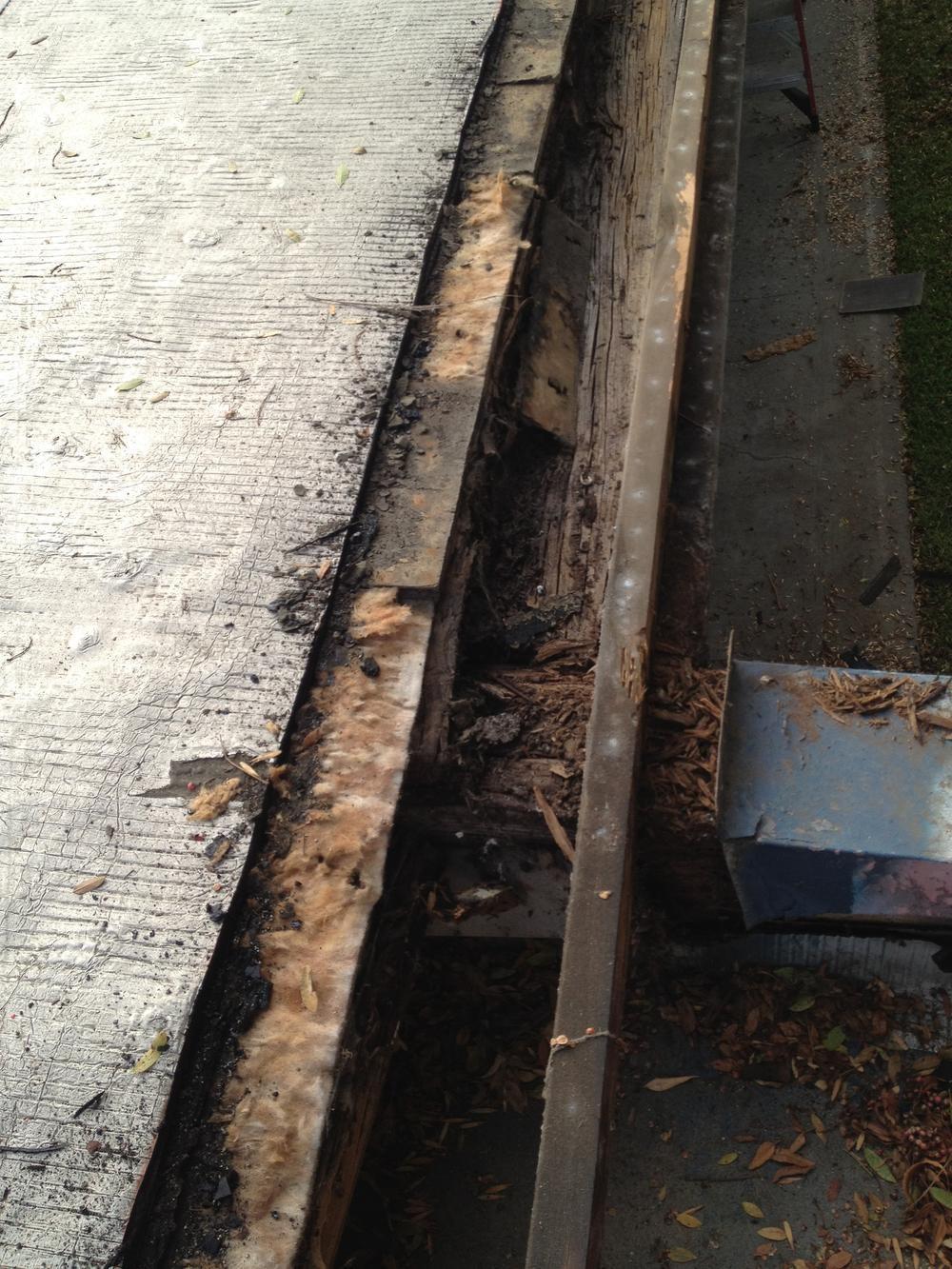 Macy Eave Repairs