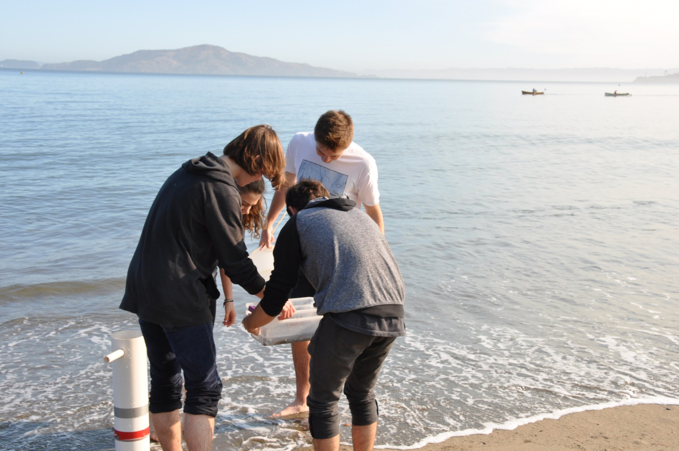 Student's at Chrissy Field searching for mole crabs.