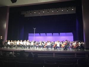Orchestra Spring Concert 2018 1.jpeg