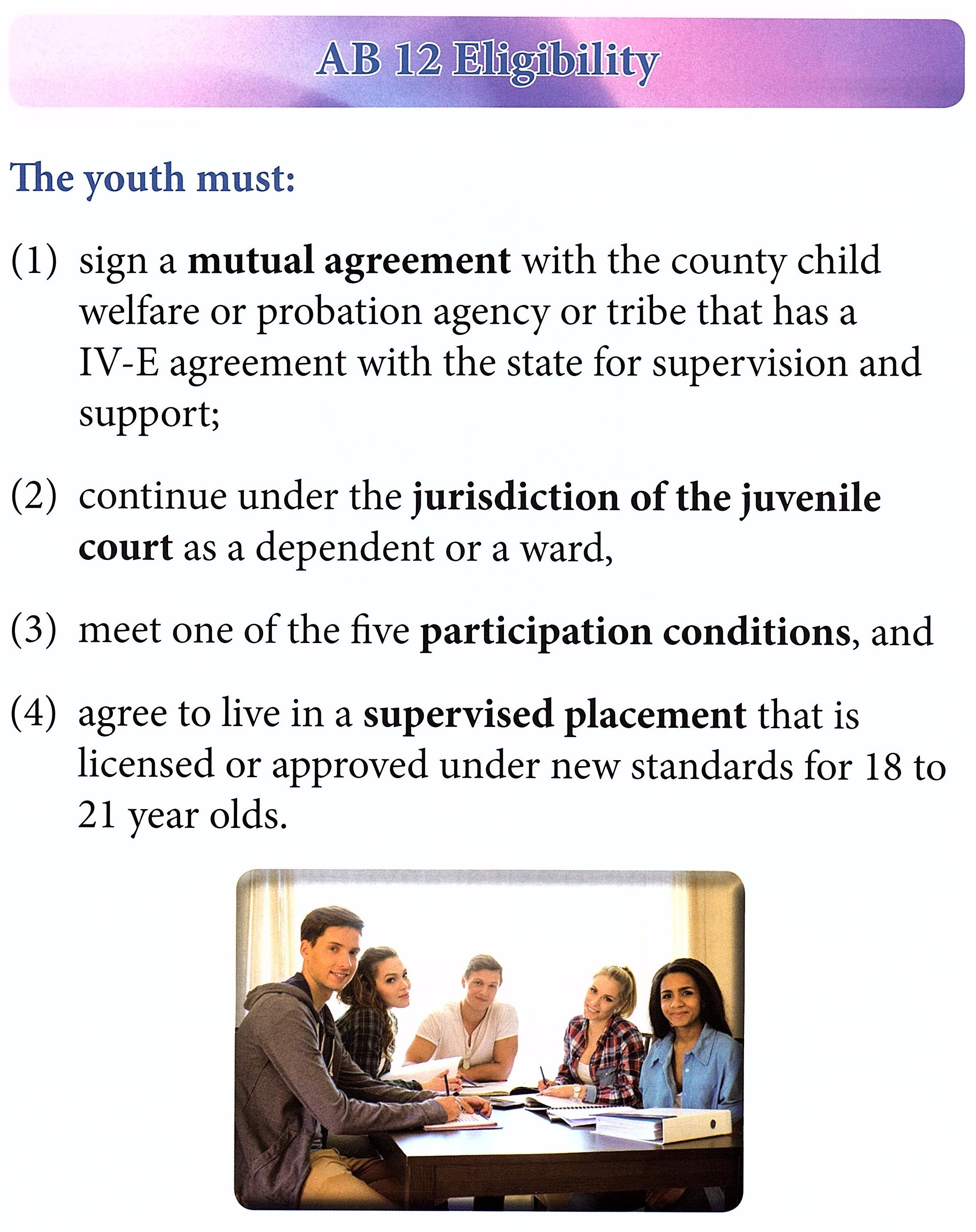 AB 12 Fact Sheet Manual