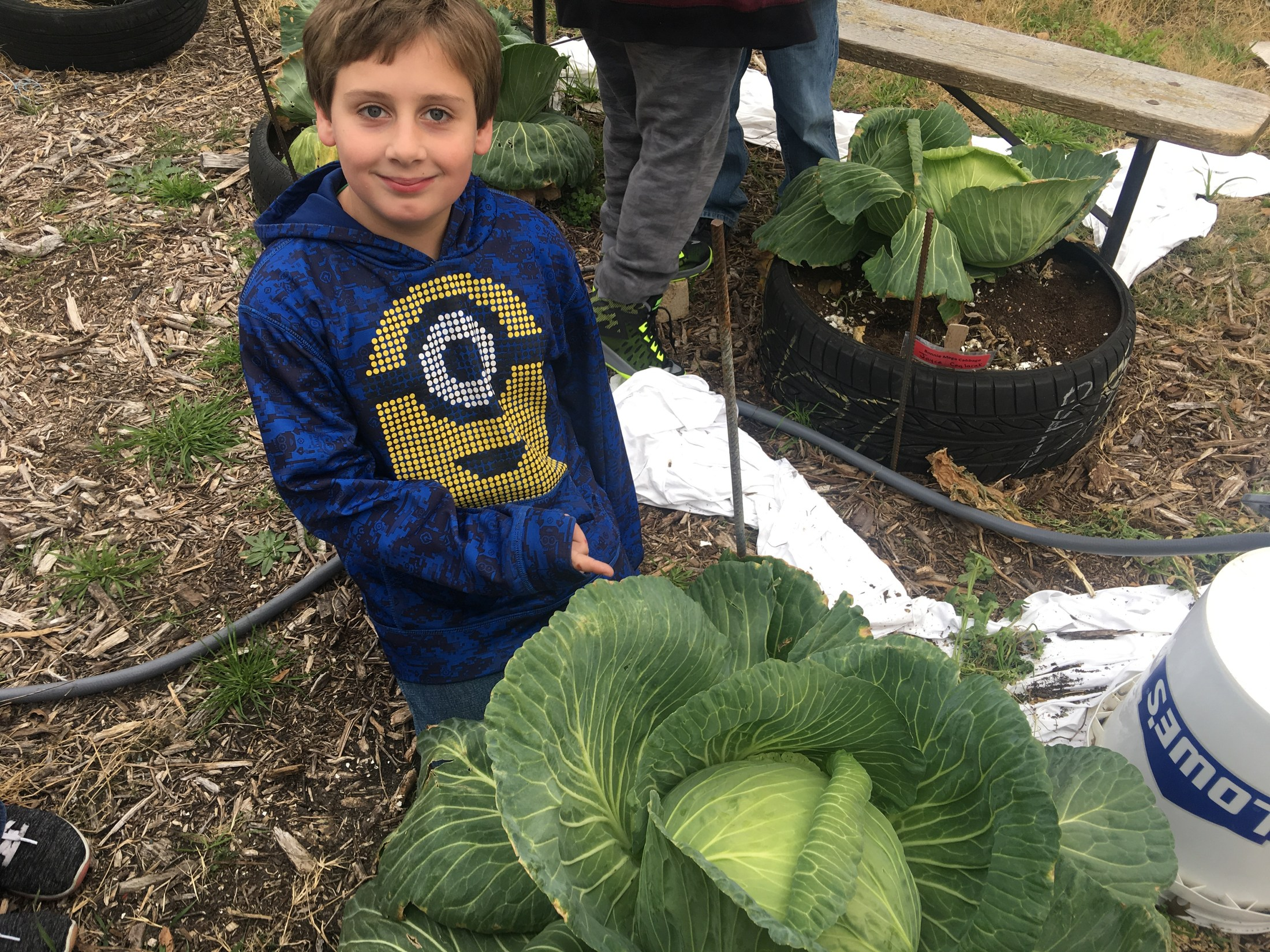 Garden club members care for their plants.