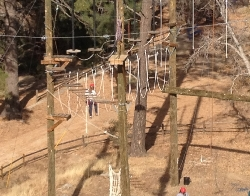 7 ropes course.jpg