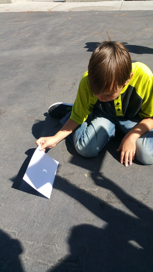 A student looks at the eclipse on the ground using a pin hole viewer.