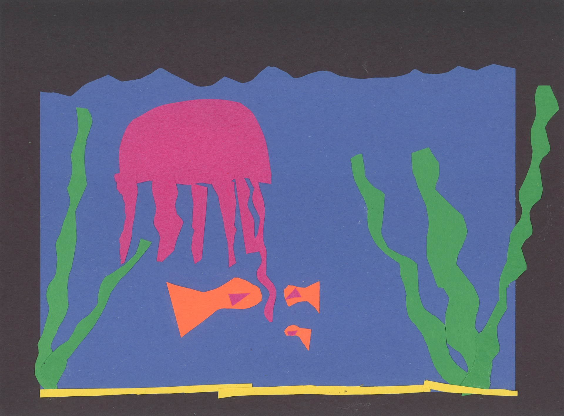 3rd Grader Ocean